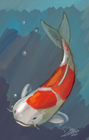 Koi Fish by ReshiDaVanci