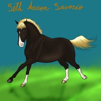 Seth Aaron Saverio- drawing for Adoption3 by SweetStreamStables