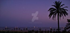 in the night of the color purple by BOYDEX