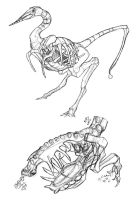 Dino Flytrap Anatomy Studies by thomastapir