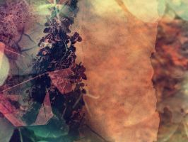 Grunge Flower Texture by pxd-resources
