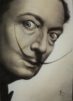 Dali by martinrocha77