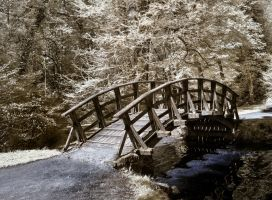 Wooden Bridge I by vw1956