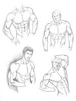 Male Torso Studies by BrianAtkins