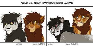 Old Vs New Improvment Meme 7 by Mikaces