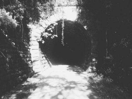 Tunel by LoveMyPillow