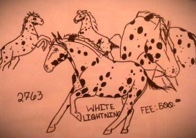White Lightning 2763 stallion ad ONLY by OccasionalSuicide