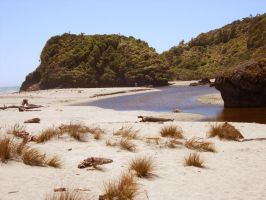 greenfroggiesstock beach1 by greenfroggiesstock