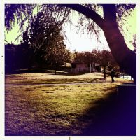 Hipstamatic At the Park 2 by Sajextryus