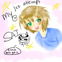 My 1st attempt with SAI by NeverlandCake