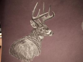 Buck Two of 'Swamp Brothers' by deerhunter2012