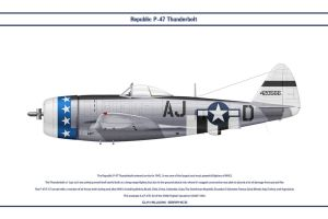 P-47 USAAF 356th FS 1 by WS-Clave