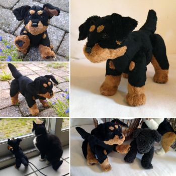 Jerry the Black and tan pup by demiveemon
