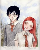 Harry Potter and Ginny Weasley by keerakeera