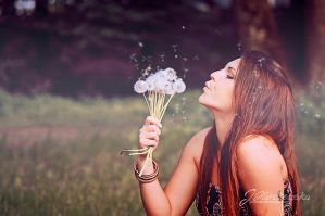 Dandelions by Justysiak