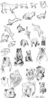 Sketchdump - Animals by Endless-Ness