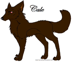 Cale by littleshadow3