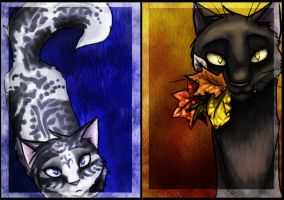 Breezepelt::Ivypool by JediMasterQuill