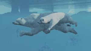 Polarbears1a by fractal2cry