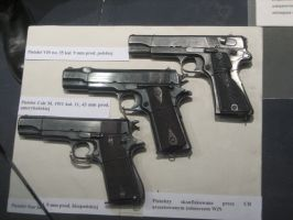 Confiscated Pistols by AnAspieInPoland