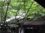 Nice view with surrounding garden at temple by cmoyl