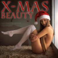 X-mas Beauty by artofdan70
