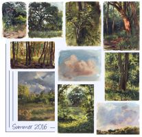 Pleinair Compilation: Summer 2016 by Camelid