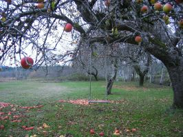 Apples to Apples by VictorianVampiress