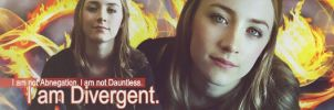 I am Divergent by Leesa-M