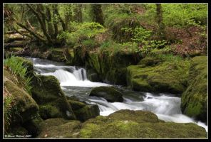 Golitha Falls 2 by Kernow-Photography