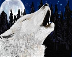 Last Cry of the Wolf by ulvar