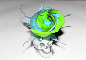 Poisonous Rose by NepinRith