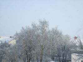 Winter Impressions 01 by LokiBartleby