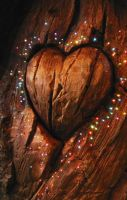 Wooden Heart by Scorpini-Stock