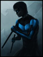 NightWing by animeninjaz