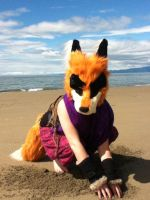 Badfox at the Beach by MonstrositiesNZ