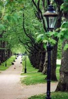 Hyde Park by dimage