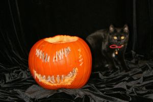 C-A-T and the Pumpkin by ComsumedDarkness
