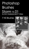 Shades Storm v.01 HD Photoshop Brushes by shadedancer619