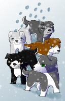 Puppies walking in snow by InuKii