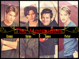 Marauders's Banner by jeyter