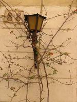 lamp 07 by Caltha-stock