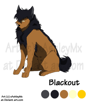 Blackout reference Sheet OLD by TheCynicalHound