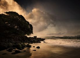 paia by maxpower