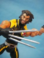 Ultimate Wolverine close up by cusT0M