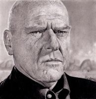 Hank Schrader - Breaking Bad by Chrisbakerart