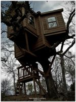 Treehouse by Nikami