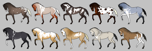Natural Adopts Auction - CLOSED by amberlini