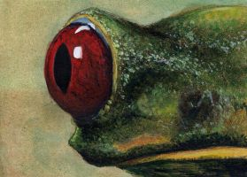 The Eye Of Treefrog by Mavuriku