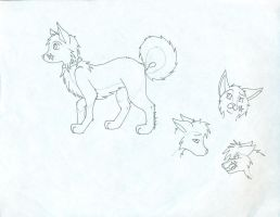 Ref sheet -unfinished- by furryRaver21